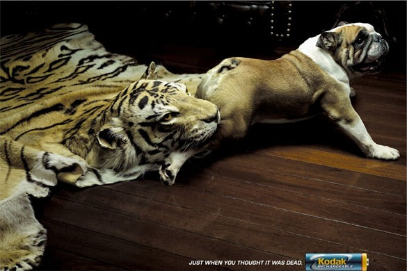 32+ Funny Crazy and Creative Print Advertisement